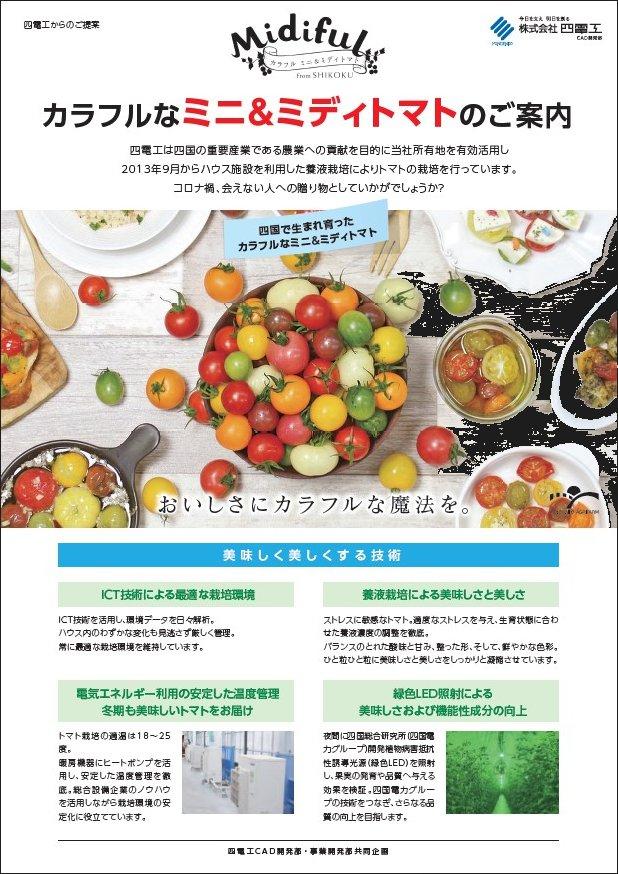 tomato_03.jpg